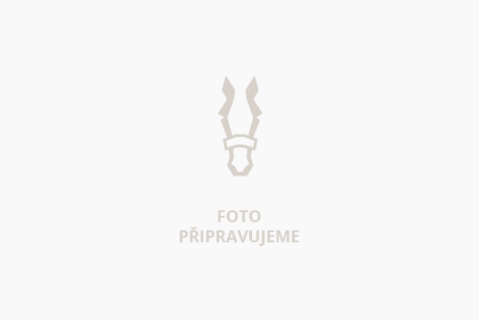 Anthos(FR)