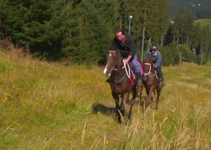 Video dokument: Trénink koní u Radka Holčáka