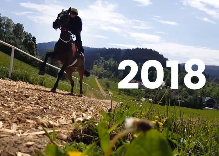Video: Ohlédnutí za rokem 2018