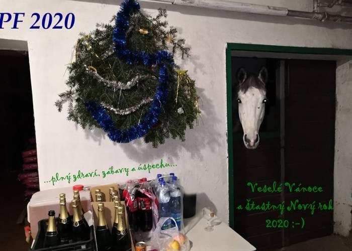 Vánoční večírek 2019 aneb PF 2020