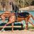 Úspěchy vyhlášených koní na Galavečeru, na kterých jsme se podíleli + fotogalerie
